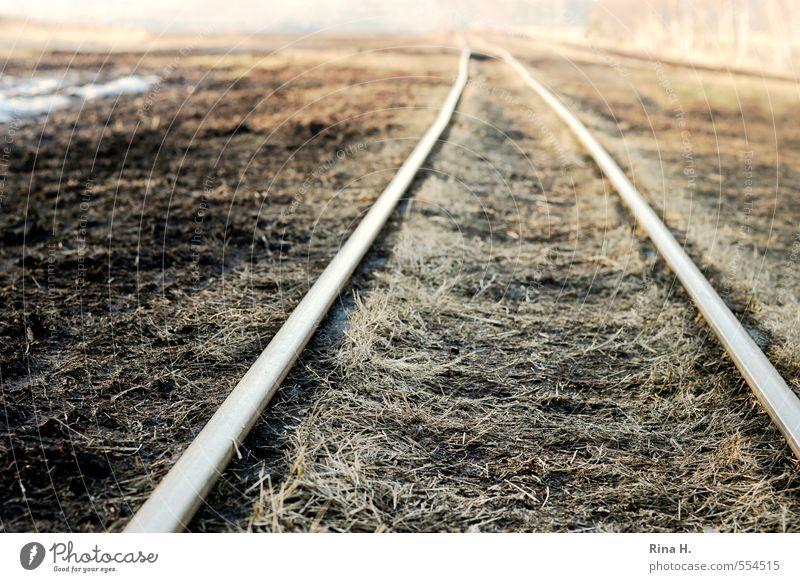 SchmalSpur Umwelt Natur Landschaft Erde Horizont Herbst Winter Gras Moor Sumpf Schienenverkehr Gleise kalt braun gelb Einsamkeit Ferne Ziel Schmalspurbahn