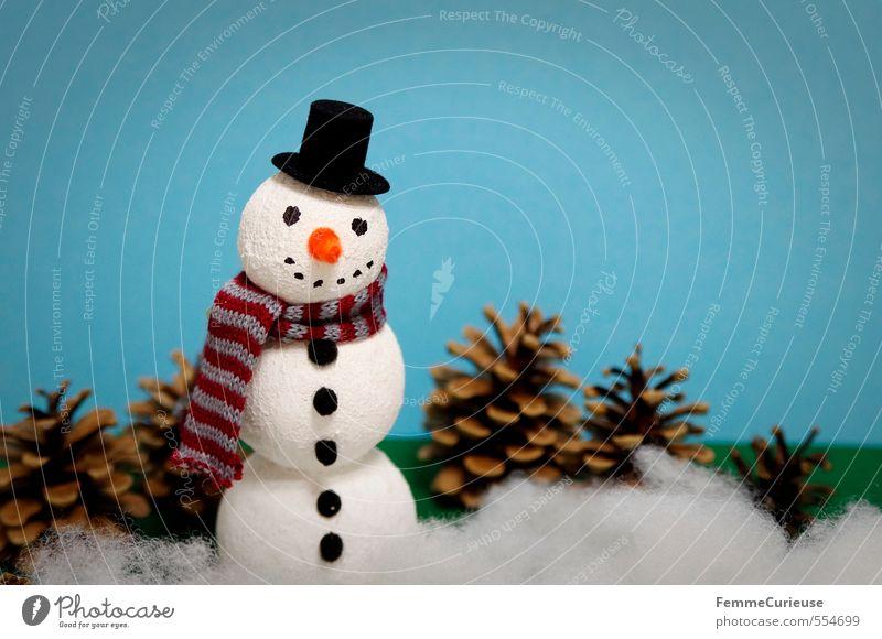 Herr Schnee Himmel Natur Weihnachten & Advent Freude Winter Schneefall Eis Freizeit & Hobby Klima Dekoration & Verzierung Schönes Wetter Frost Kreativität