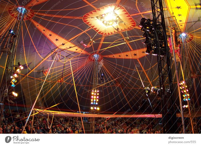 zirkus Mensch Dach Zirkus Zelt Schutz Manege