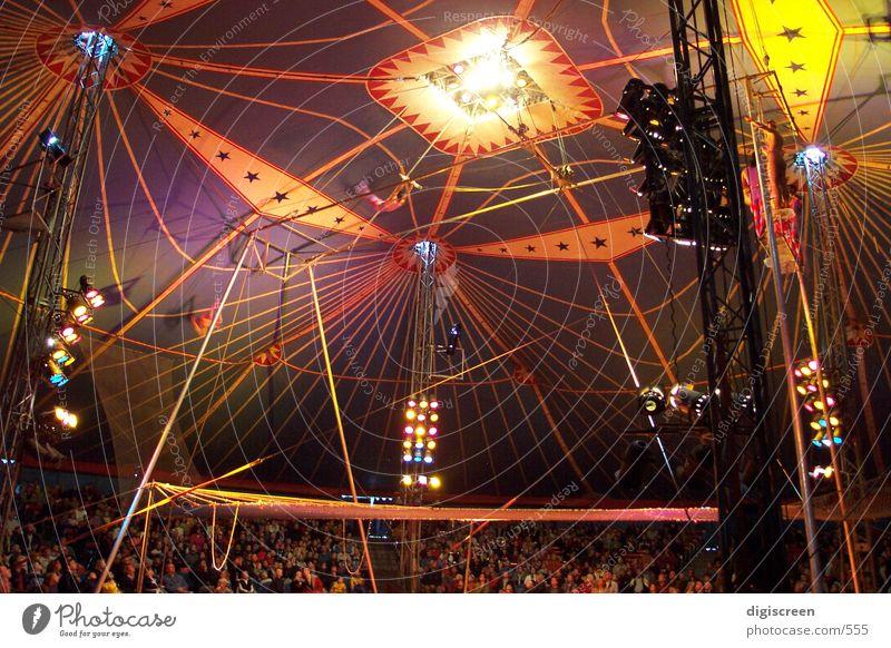 zirkus Zirkus Manege Dach Zelt Mensch trapez