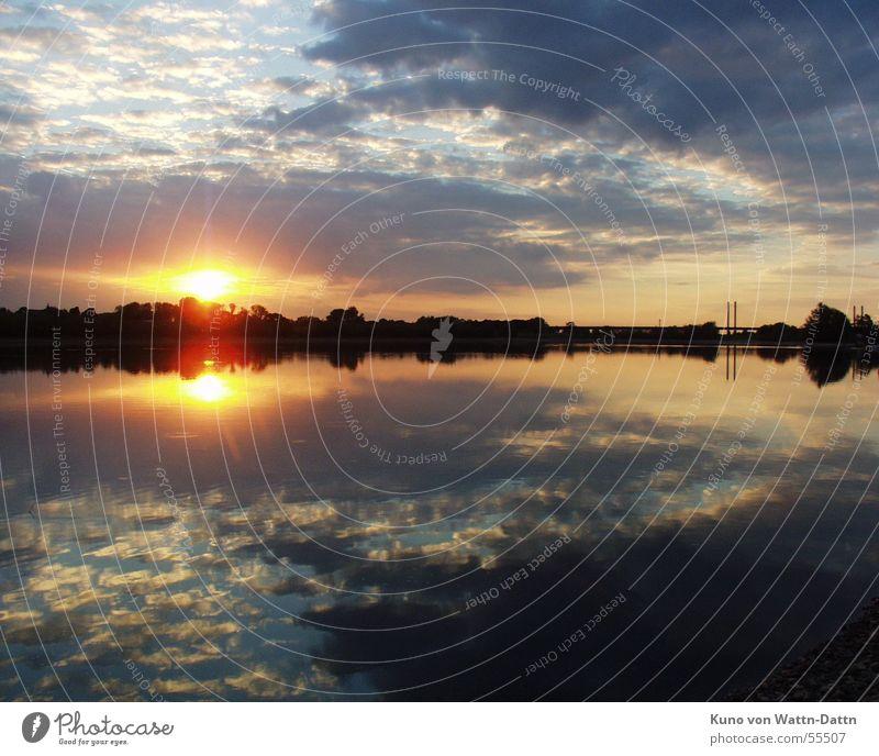 Warum ist es am Rhein so schön? Sonnenuntergang Angeln Wolken Wasser rheinarm Natur Idylle