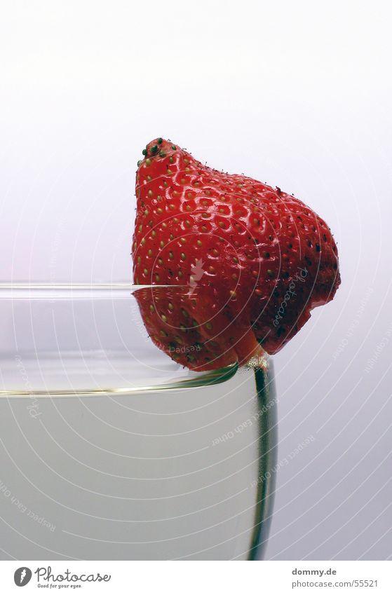 Erdbeerwein rot grün grau weiß Getränk lecker süß Weißwein Erdbeeren Haarschnitt glass Frucht Ernährung