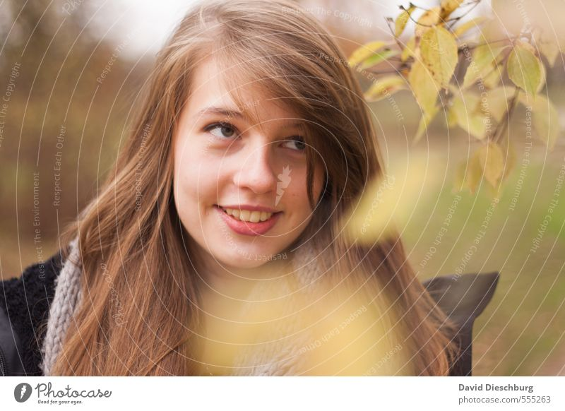 Kathi III feminin Junge Frau Jugendliche Schwester Leben Kopf Gesicht 1 Mensch 13-18 Jahre Kind Natur Frühling Herbst Baum Blatt Park Wald brünett langhaarig