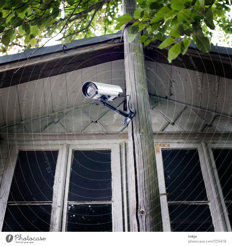 besser ist das Lifestyle Reichtum Häusliches Leben Haus Garten Videokamera Überwachungskamera Technik & Technologie Frühling Sommer Baum Blatt Menschenleer