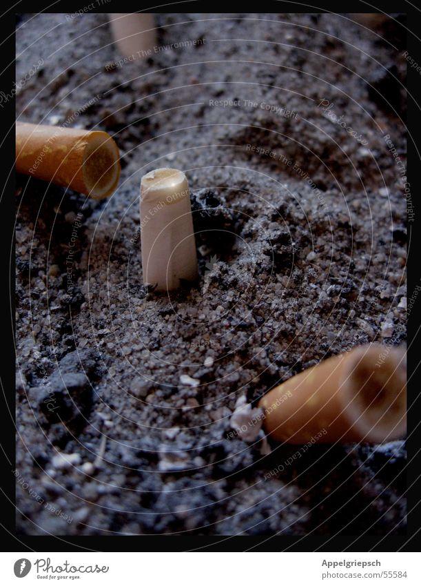 toxisch Aschenbecher Vergänglichkeit abgestanden zigarrette Filter Brandasche Rauchen Gift