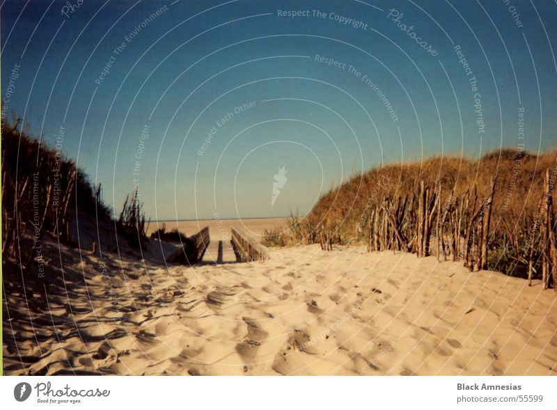 sand zwischen den zehen Himmel blau Strand Ferien & Urlaub & Reisen Wege & Pfade Sand Nordsee August St. Peter