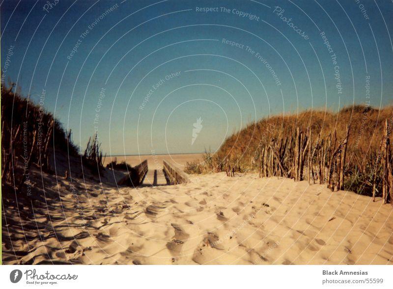 sand zwischen den zehen Strand Ferien & Urlaub & Reisen Sand noch mehr sand kein schöner strand Wege & Pfade Himmel blau Nordsee St. Peter August