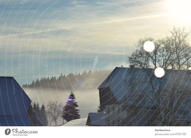 Das Licht führt zum Stall Himmel Natur blau weiß Baum Landschaft Haus Winter Wald Umwelt Schnee Stimmung hell Häusliches Leben Nebel leuchten