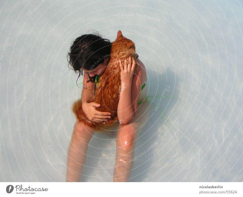 mit Katzen badet man nicht Kind Wasser Mädchen Wärme Schwimmbad Physik Sport Peru Wissenschaften