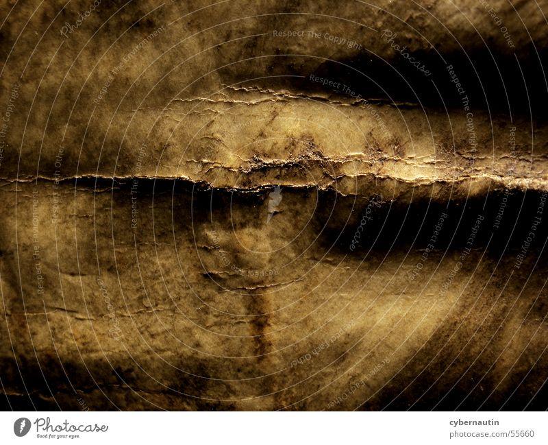 morbider Buchrücken Leder labil braun Bucheinband Antiquariat alt Riss buchrücken Falte bräunlich Bruch Abnutzung Detailaufnahme