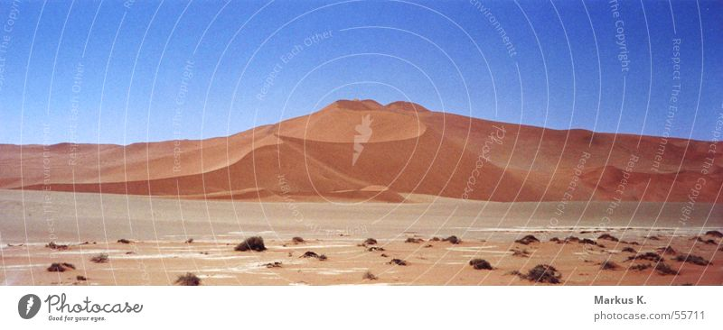 Sossusvlei (2) trocken heiß Physik Namibia Afrika Wüste Stranddüne Sand Durst Wärme
