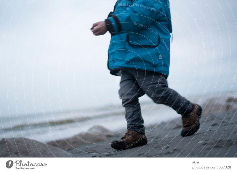 strandspaziergang Mensch Kind Ferien & Urlaub & Reisen Meer Strand Winter Ferne Leben Herbst Junge Küste Spielen Freiheit Sand Gesundheit gehen