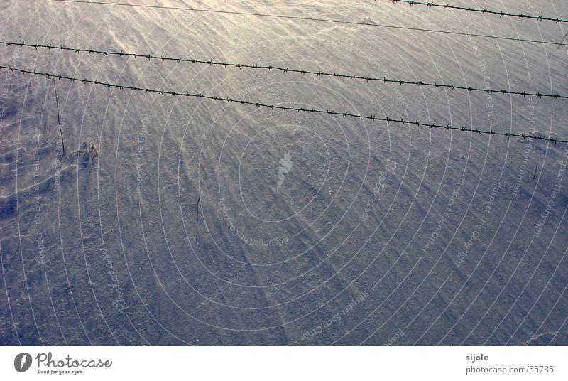 Wann kommt der Frühling??? weiß Sonne blau Winter kalt Schnee Wind Bodenbelag Zaun Draht Stacheldraht Sandverwehung Schneewehe