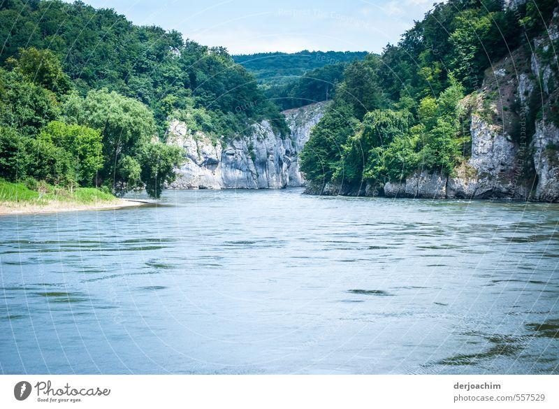 Donaudurchbruch Natur blau grün Wasser Sommer Erholung Landschaft Wolken Wald Umwelt Leben Bewegung Felsen ästhetisch Schönes Wetter einzigartig