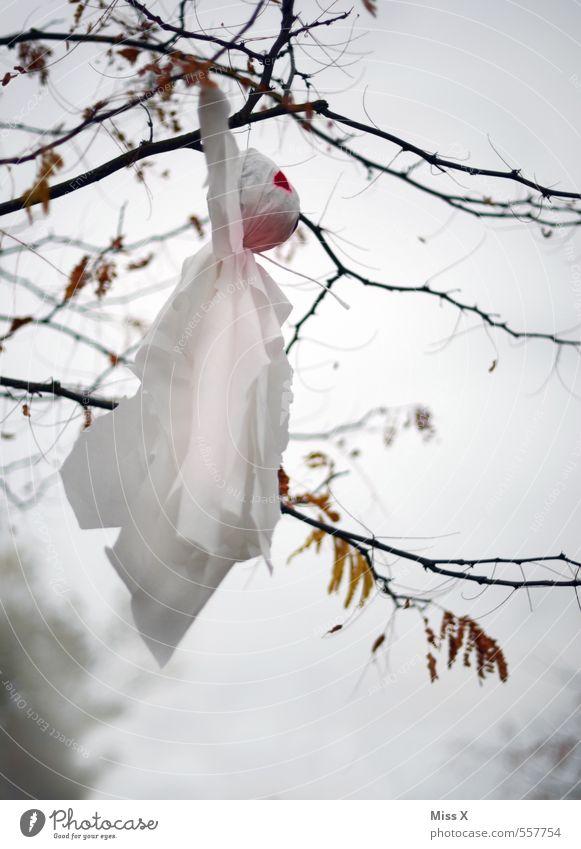Buhuuu weiß Baum Winter Herbst fliegen Angst Dekoration & Verzierung Ast gruselig Zweig Geister u. Gespenster hängen Halloween spukhaft Spuk Gespensterwald