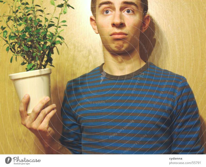 Menschenskind VIII Mensch Mann Hand Pflanze Gesicht Wand Holz Stil lustig Körperhaltung Gesichtsausdruck Pullover Blumentopf Witz Unsinn Maserung