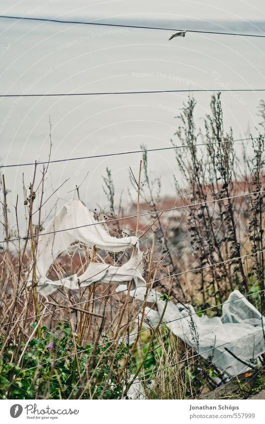 Portobello IV Umwelt Natur Herbst Winter schlechtes Wetter Edinburgh Schottland Großbritannien trashig trist Tod schuldig Müll Zaun Strand dreckig
