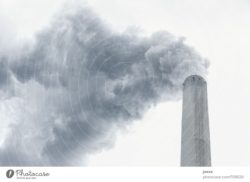 Rauchvergiftung I Luft Himmel Wolken Klima schlechtes Wetter Rauchen gruselig hässlich kalt oben Stadt blau grau weiß Angst bizarr Endzeitstimmung Energie