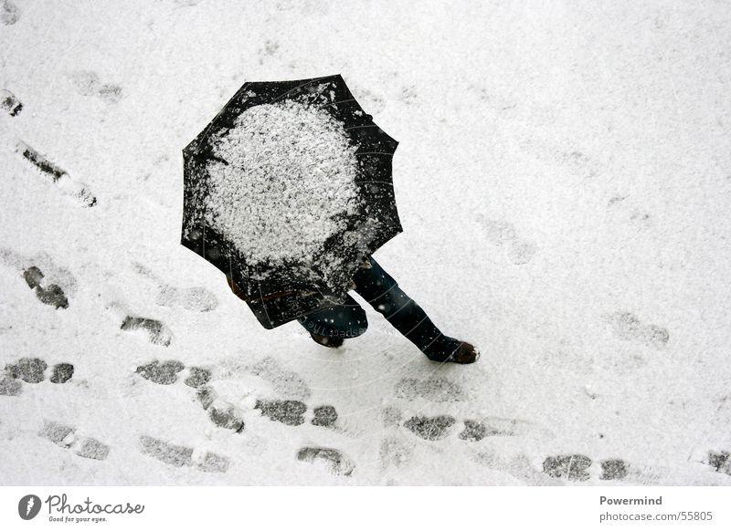 SnowWalk Frau weiß Winter schwarz kalt Schnee oben Eis Beine gehen laufen Elektrizität Spaziergang liegen Spuren Regenschirm