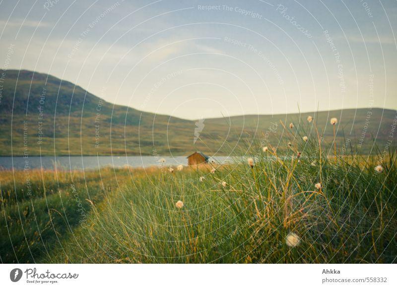 See mit Hütte hinter Wollgras Natur grün Pflanze Erholung Einsamkeit Landschaft ruhig Berge u. Gebirge Wege & Pfade Gras Zeit See Horizont Stimmung Idylle Zufriedenheit