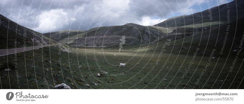 Freiheit Himmel Wolken Ferne Wiese Landschaft groß Italien Panorama (Bildformat) Abruzzen