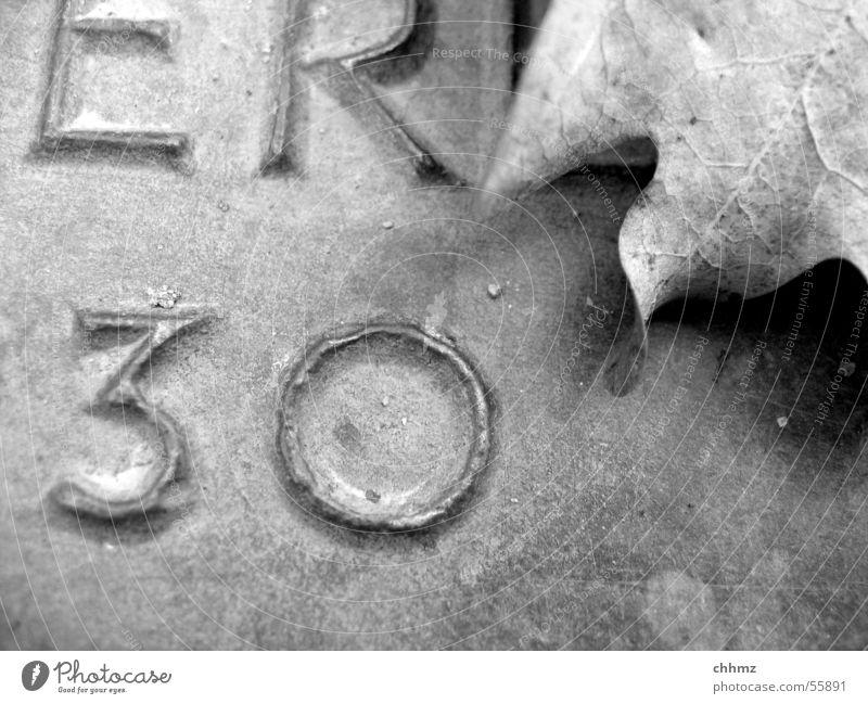 30er Blatt Eichenblatt erinnern Erinnerung Aufschrift erhaben Bronze Ziffern & Zahlen schwarz weiß Schriftzeichen Schwarzweißfoto
