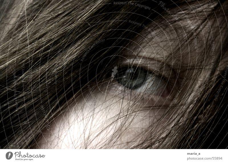 zerzaust strohig Trauer unheimlich Suche Sehnsucht Einsamkeit aufhängen Durchblick Frau Mensch Mädchen Wimpern geheimnisvoll Haare & Frisuren Auge Traurigkeit