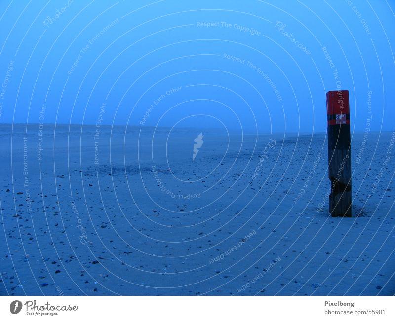 Blaue Stunde Winter Strand ruhig Einsamkeit kalt Freiheit