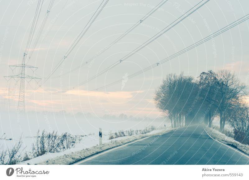 icy road Energiewirtschaft Natur Landschaft Winter Wetter Nebel Eis Frost Schnee Baum Sträucher Feld Verkehrswege Straße Wege & Pfade fahren