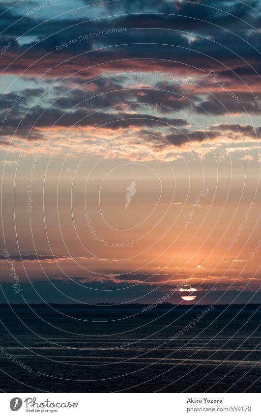 Bis die Wolken wieder lila sind. Natur Landschaft Himmel Horizont Sonne Sonnenaufgang Sonnenuntergang beobachten berühren dunkel natürlich blau gelb violett