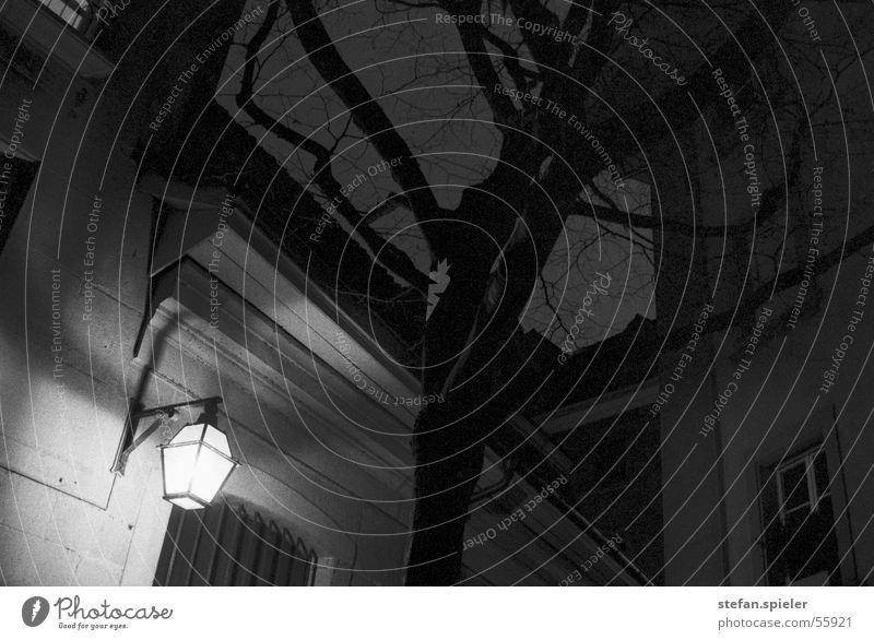 Hinterhof Nacht Laterne Lampe Baum Stadt Haus Licht dunkel schwarz weiß Gasse Straßenbeleuchtung Langzeitbelichtung gefährlich Nachtaufnahme Dach Gebäude unten