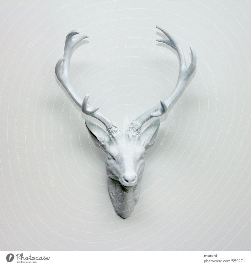 es hirscht Kunst Tier Wildtier Tiergesicht weiß Hirsche hirschgeweih Horn Dekoration & Verzierung Häusliches Leben Wand Innenaufnahme Menschenleer Tag