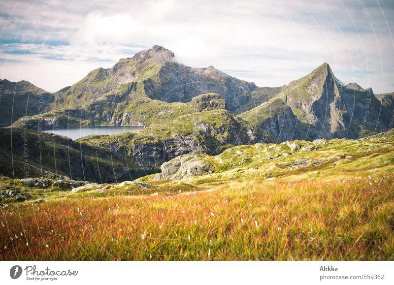 Gipfelblick ruhig Abenteuer Berge u. Gebirge Natur Landschaft Pflanze Moor Sumpf See gelb bizarr chaotisch Einsamkeit Erholung Ewigkeit Horizont Idylle