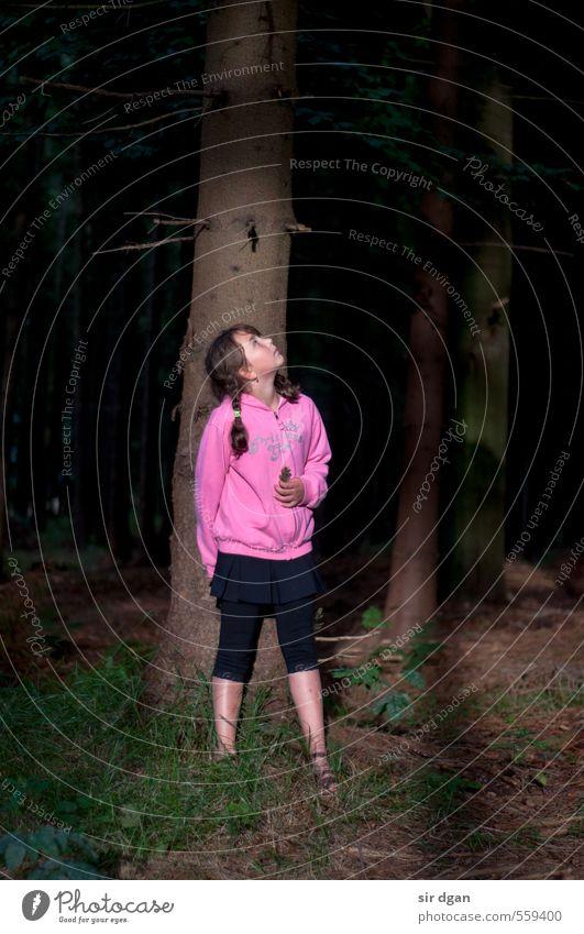 alein im wald Freude Krankheit Wohlgefühl Erholung ruhig Ausflug Abenteuer Sommer wandern feminin Kind Mädchen Kindheit Körper Kopf Gesicht 1 Mensch 8-13 Jahre