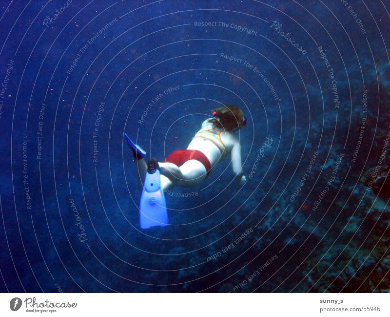 immer tiefer tauchen Schnorcheln Wasser Unterwasseraufnahme Schwimmhilfe