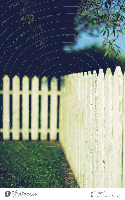 Idylle mit Zaun grün Pflanze Sommer Baum Wärme Garten Schönes Wetter
