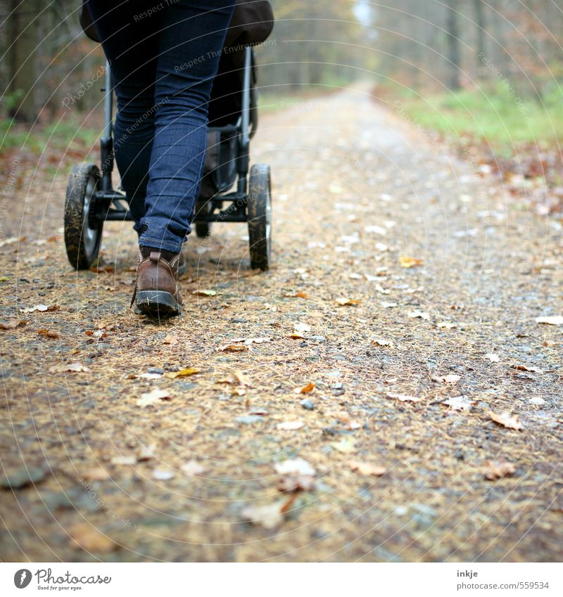 Herbstspaziergang Mensch Frau Natur Erholung Blatt Winter Wald Erwachsene Umwelt Leben Gefühle Bewegung Wege & Pfade gehen Luft