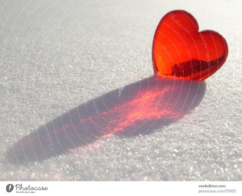 loves in the snow Zucker Puderzucker Winter kalt rot purpur weiß rein schimmern Außenaufnahme Symbole & Metaphern Kitsch Partnerschaft rund Sehnsucht Licht