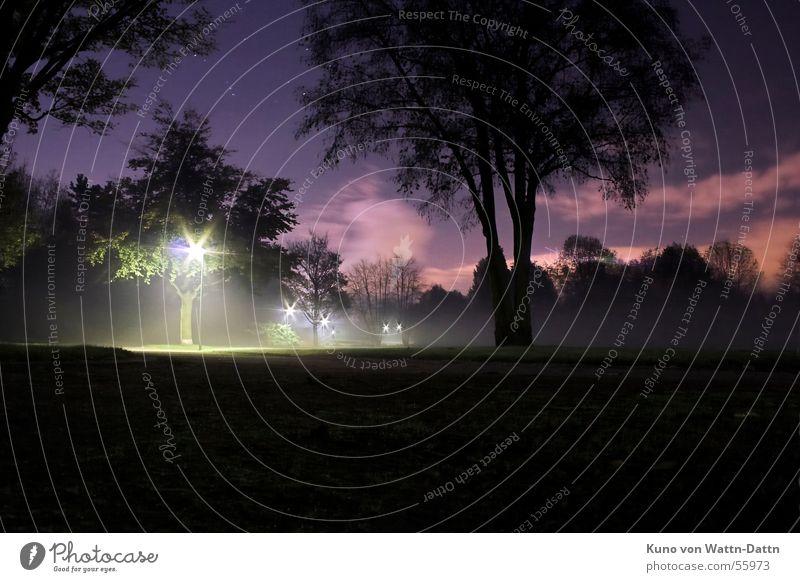 NightVision, Nachts im Bottroper Volkspark Langzeitbelichtung Nachtaufnahme Wolken Park dunkel Baum Himmel Stern (Symbol) orion