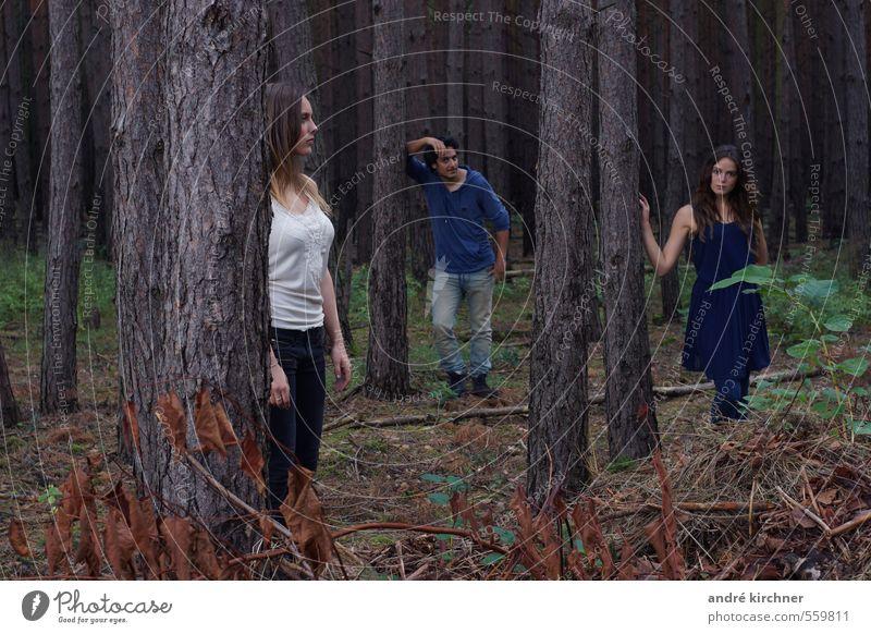 wooden bermuda triangle maskulin feminin Paar 3 Mensch Menschengruppe 18-30 Jahre Jugendliche Erwachsene Natur Herbst Baum Wald beobachten Zusammensein Erotik
