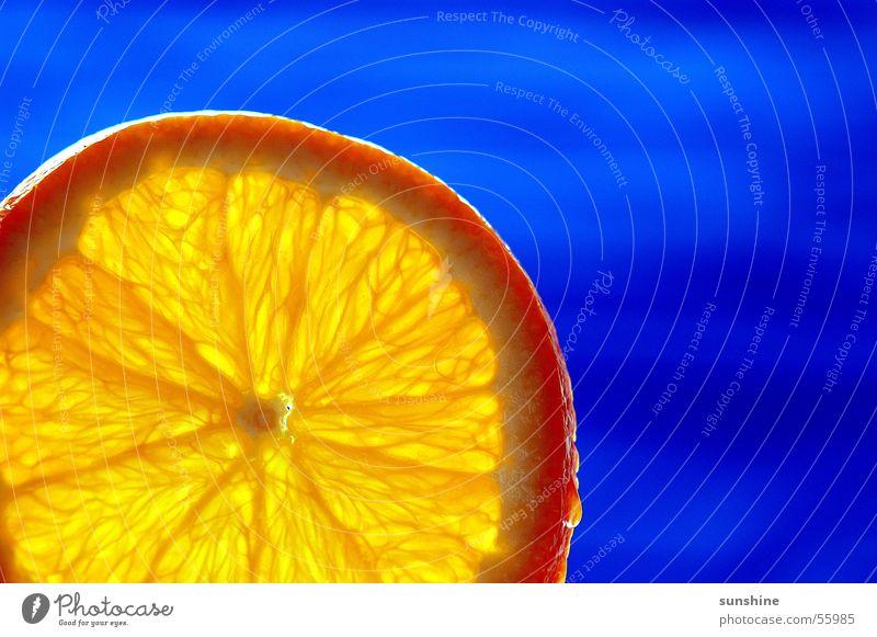 Blue Orange blau Sommer orange Frucht Cocktail Südfrüchte Zitrusfrüchte
