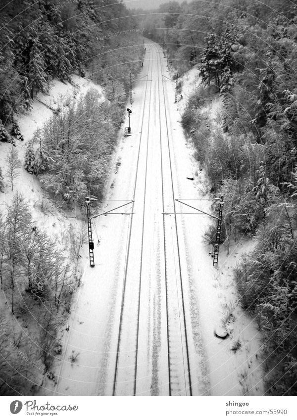 Wintergleisbett Schnee Umwelt Natur Landschaft Schönes Wetter Eis Frost Wald Verkehrswege Personenverkehr Öffentlicher Personennahverkehr
