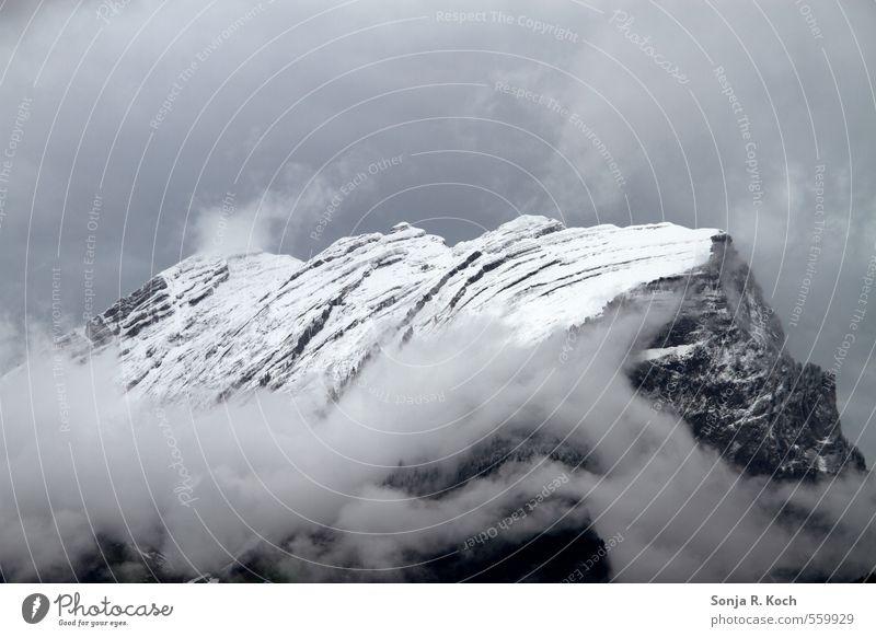 Kanisfluh Himmel Natur Ferien & Urlaub & Reisen weiß Landschaft Wolken Winter schwarz Berge u. Gebirge Schnee grau Felsen Nebel wandern Europa Ausflug