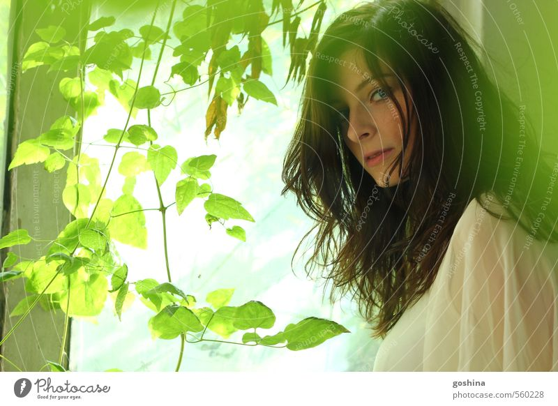 Green Pleasure Blatt schwarzhaarig langhaarig Blick reizvoll geheimnisvoll attraktiv bezaubernd grün Grünpflanze farbwelt Suche staunen Fragen Frau