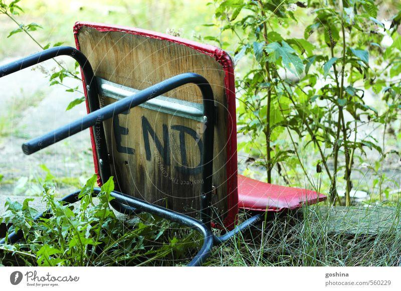 This is the End Natur grün Pflanze rot Wiese Tod Gras Holz Sträucher Vergänglichkeit Stuhl Vergangenheit Ende Verfall Grünpflanze morbid