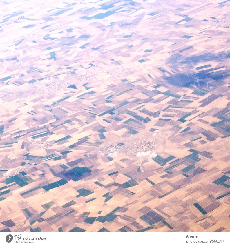 Ist das da unten alles wirklich so wichtig? Ferien & Urlaub & Reisen Landschaft Wolken Ferne Umwelt klein Luft rosa Feld Erde Tourismus Luftverkehr Landwirtschaft Dorf unten Ackerbau