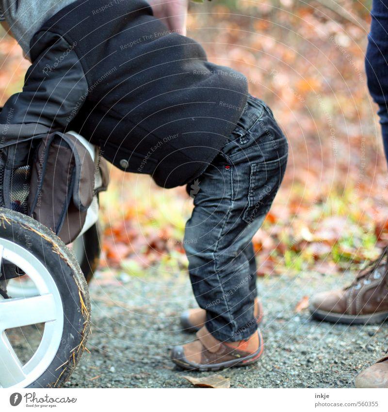Herbstspaziergang Mensch Natur Winter Leben Wege & Pfade Junge Freizeit & Hobby Körper Schuhe Kindheit Lifestyle laufen stehen Baby Ausflug
