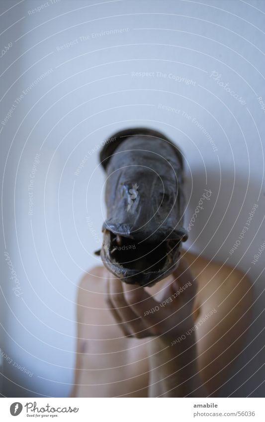Anglertraum träumen Angeln Kunst verrückt Hand Fisch Kopf Maske