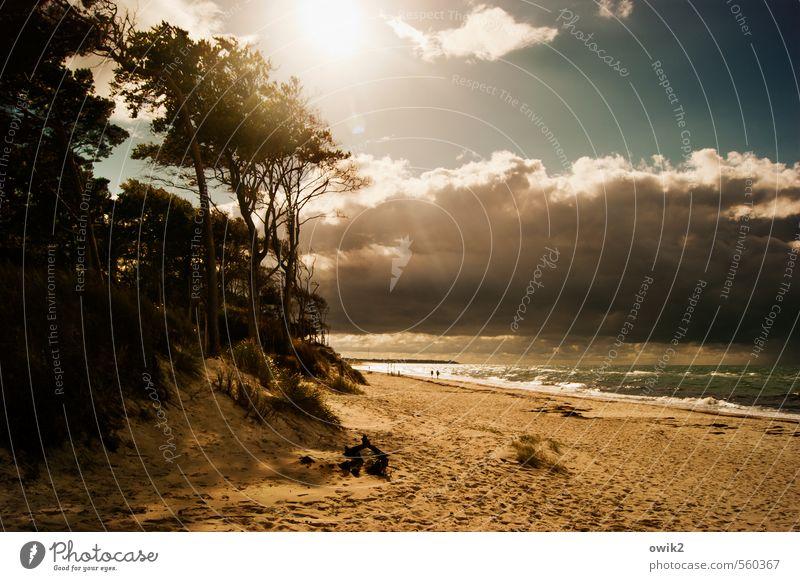 Küstenstreifen Ferne Freiheit wandern Mensch Paar 2 Umwelt Natur Landschaft Pflanze Wasser Himmel Gewitterwolken Horizont Klima Schönes Wetter Baum Wellen