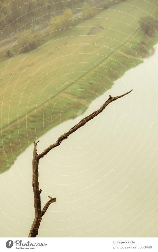 abhängen Ausflug Berge u. Gebirge wandern Umwelt Natur Landschaft Wasser Herbst Pflanze Baum Flussufer grün Gelassenheit Farbfoto Gedeckte Farben Außenaufnahme